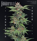 The Cannabis Issue 2019